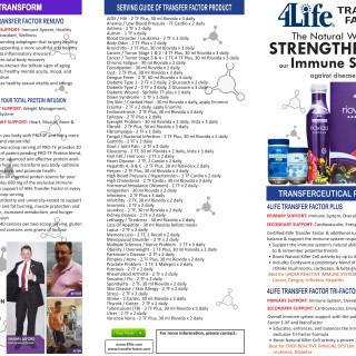 4life Flyer